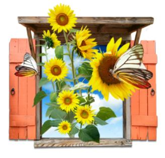 Flowers_Sunflowers_Window_Icon_by_Itzik_Gur